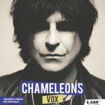 Chameleons Vox regressam a Portugal para concerto único em abril em Arcos de Valdevez